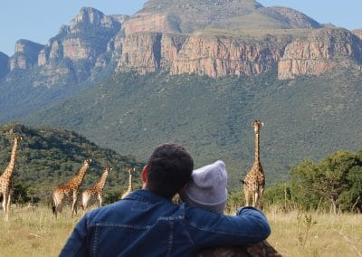 African Trilogy - Giraffe Mountain Couple